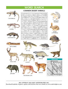 Common Desert Animals Worksheet