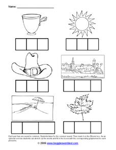 Common Sounds in Words Worksheet