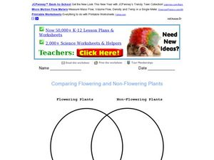 Comparing Flowering and Non-Flowering Plants Worksheet