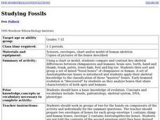 Comparing Fossils Lesson Plan