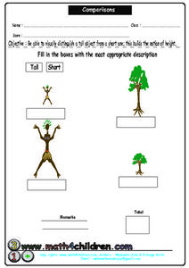 Comparisons: Tall or Short? Worksheet
