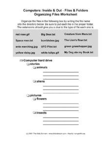 Computers Organizing Files Worksheet Worksheet