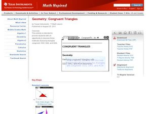 Congruent Triangles Lesson Plan
