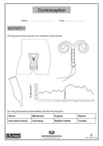 Contraception Worksheet