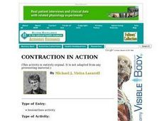 Contraction in Action Lesson Plan