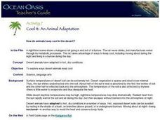 Cool It: An Animal Adaptation Lesson Plan