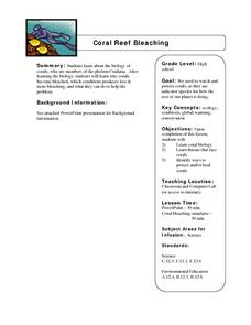 Coral Reef Bleaching Lesson Plan