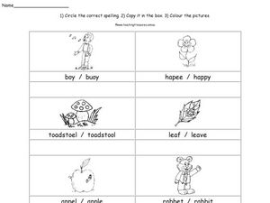 Correct Spelling Worksheet