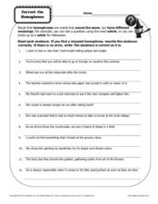 Correct the Homophones Worksheet