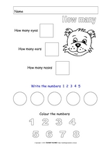 Count How Many Numbers Worksheet
