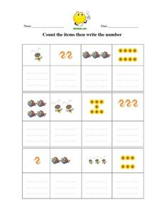 Count the Items Then Write the Number Worksheet