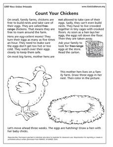 Count Your Chickens Lesson Plan