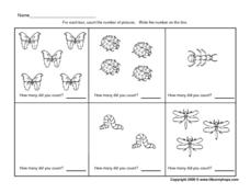 Counting Insect Pictures - 0-5 Worksheet