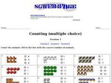 Counting (Multiple Choice) Worksheet