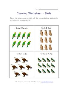 Counting Worksheet - Birds Worksheet