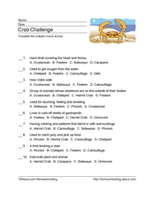 Crab Multiple Choice Activity Worksheet