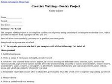 Creative Writing - Poetry Project Activities & Project