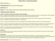 Critters R Us or Crime Scene Critters Lesson Plan