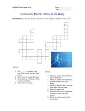Crossword Puzzle - Parts of the Body Worksheet