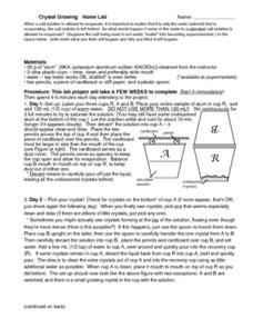 Crystal Growing-Home Lab Worksheet