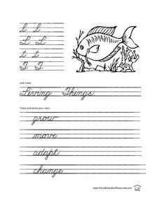 Cursive Practice T and L Lesson Plan