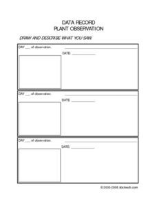 Data Record Plant Observation Worksheet
