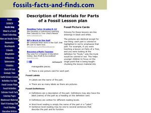 Description of Materials for Parts of a Fossil Lesson Plan Lesson Plan