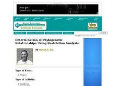 Determination of Phylogenetic Relationships Using Restriction Analysis Lesson Plan