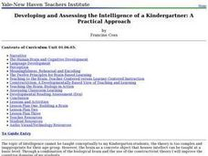 Developing and Assessing the Intelligence of a Kindergartner: A Practical Approach Lesson Plan
