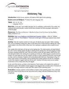 Dictionary Tag Lesson Plan