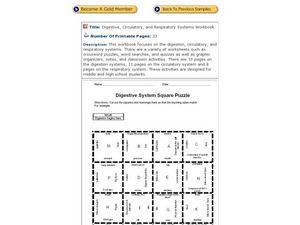 29 Digestive System Worksheet Answer Key - Free Worksheet ...