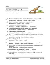 Dinosaur Multiple Choice Activity Worksheet