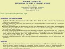 Dinosaur Paleoecology: Determining the Diet of Ancient Animals Lesson Plan