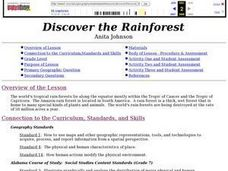 Discover the Rain Forest Lesson Plan