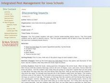 Discovering Insects Lesson Plan