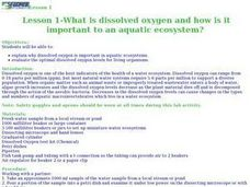 Dissolved Oxygen in an Aquatic Ecosystem Lesson Plan