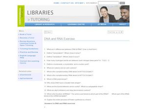 DNA and RNA Exercises Worksheet