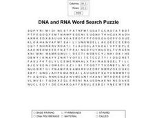 DNA and RNA Word Search Puzzle Worksheet
