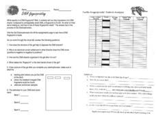 dna fingerprint worksheet - Termolak