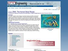 DNA: The Human Body Recipe Lesson Plan