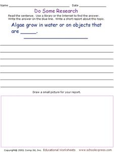 Do Some Research - Algae Growth Worksheet
