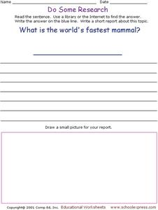 Do Some Research: Cheetah Worksheet