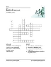 Dolphins Crossword Puzzle Worksheet