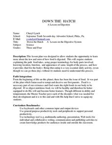 Down The Hatch Lesson Plan