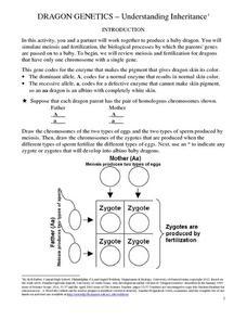 dragon genetics understanding inheritance 7th 12th grade worksheet lesson planet. Black Bedroom Furniture Sets. Home Design Ideas