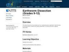 Earthworm Dissection Lesson Plan