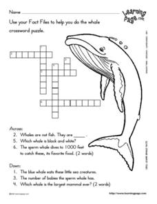 easy whales crossword puzzle 1st 2nd grade lesson plan lesson planet. Black Bedroom Furniture Sets. Home Design Ideas