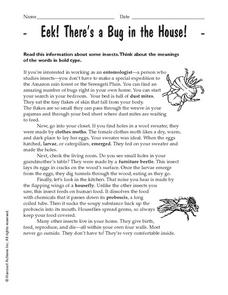 Eek! There's a Bug in the House! Worksheet