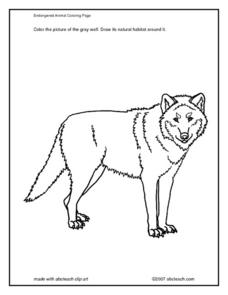 Endangered Animal Coloring Page Worksheet