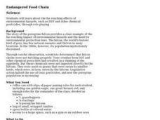 Endangered Food Chain Lesson Plan